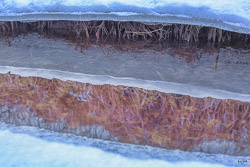 details discovered while exploring a winter creek. Reflections, textures, colors and shapes lie within