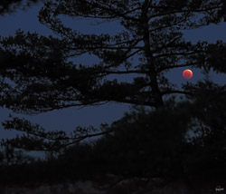 October blood moon from Devils Lake East Bluff