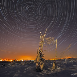 kristen-westlake-20150211-winter-star-trails-at-night-with-snow-and-corn-stalks-0022.jpg