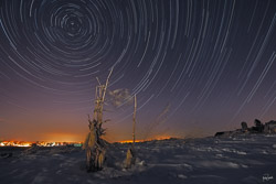 kristen-westlake-20150211-winter-star-trails-at-night-with-snow-and-corn-stalks-0022a.jpg