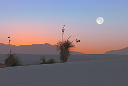 I was happy to time my few days in White Sands National Monument, near Las Cruces and Alamagordo, New Mexico, to the full moon.